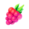 RazzBerry-GO