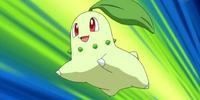 Lyra's Chikorita