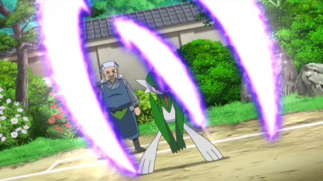 File:Woodward Gallade Psycho Cut.png