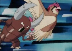 Samurai's Pinsir; Tackle
