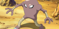 Barry's Hitmonlee