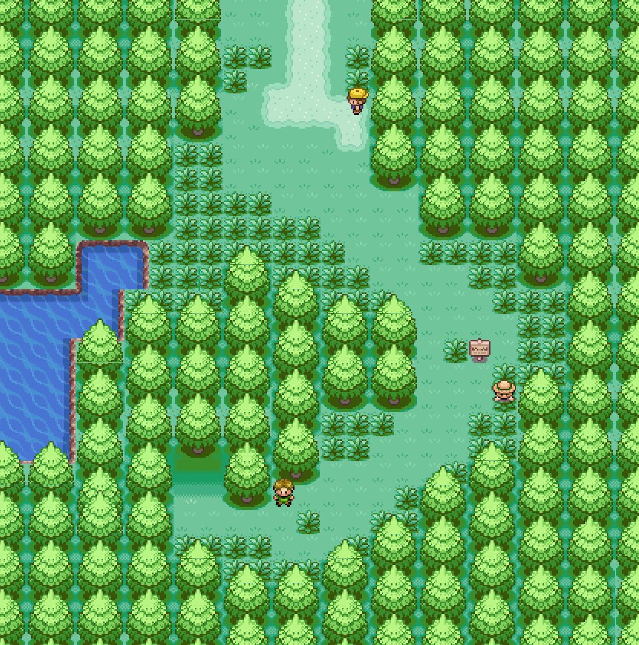 Route  Pokemon Zeta Omicron Wiki FANDOM Powered By Wikia - Us route 301 map