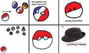 Le polandball fedora