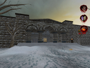 Winter Library