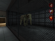 Elephant inside Creature Control Center and Pets