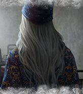 Dumbledore B6C13M1 background