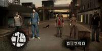 Video Game Hallucinations