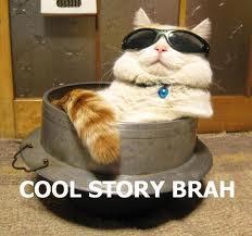 File:Cool Story Bro.jpg