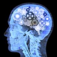 Mind-Gears