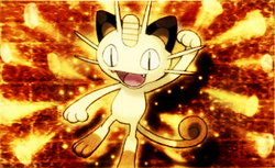 Meowth 52 Payday