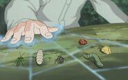 Shino Bug Gathering Technique