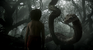The Jungle Book 2016 (film) 16