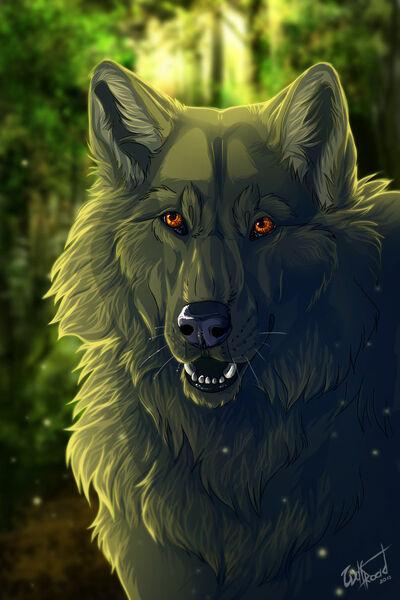 Wolfser