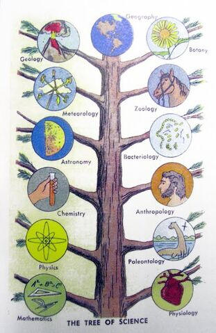 File:Tree-of-science.jpg