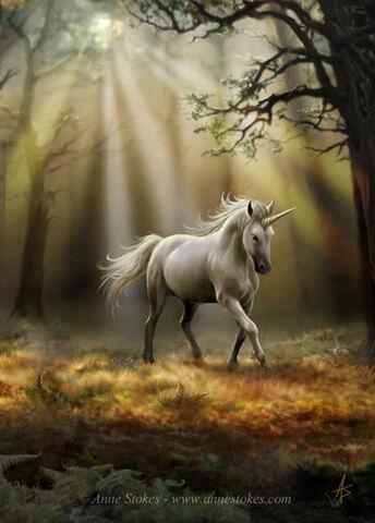 File:Glimpse of a unicorn by Ironshod.jpg