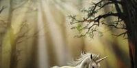 Unicorn Physiology