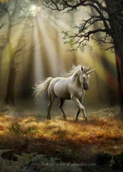 Unicorn Physiology  Superpower Wiki  Fandom powered by Wikia