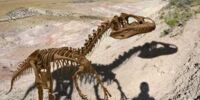 Fossil Manipulation