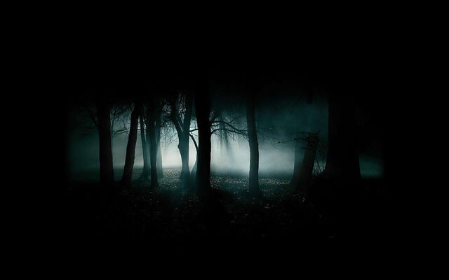 File:Dark-forest.jpg