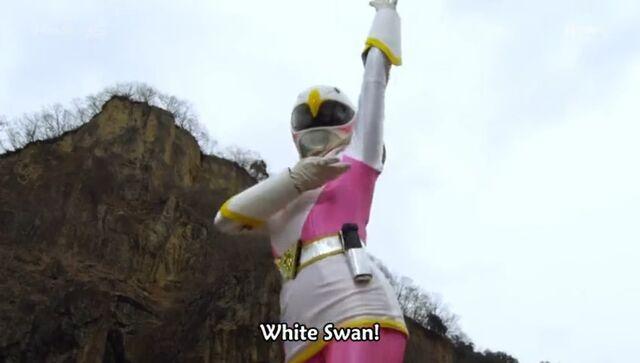 File:White Swan (Delusional War).jpg