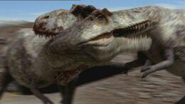 1x1 TyrannosaurusFight
