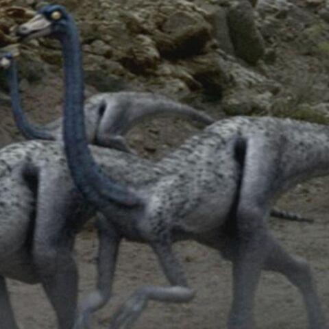 File:OrnithomimusPortrait.jpg