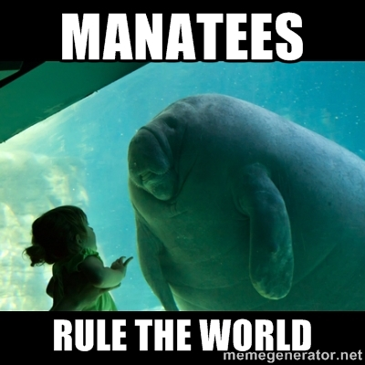 File:MANATEES.jpg