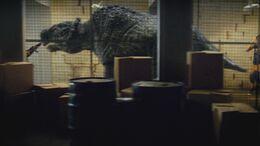 2x7 Scutosaurus 4