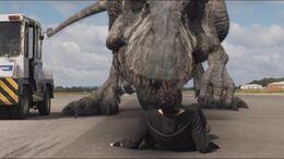 3x4 Giganotosaurus 57