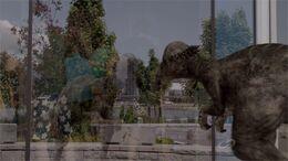 TruthPachycephalosaurusMistakesReflection