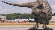 3x4 Giganotosaurus 72