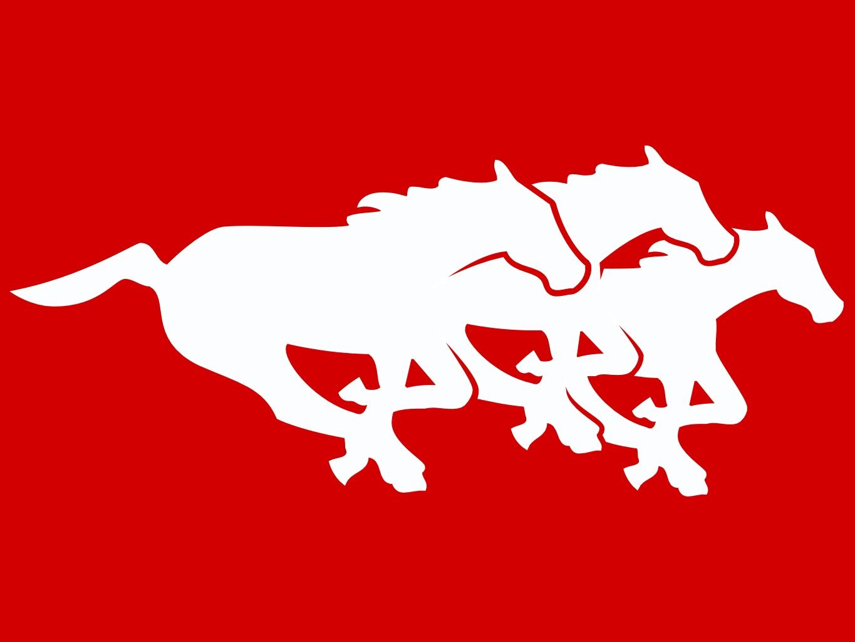Calgary Stampeders Pro Sports Teams Wiki Fandom