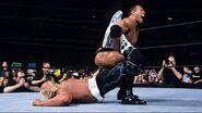 WrestleMania 18.17