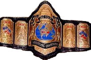 GWF Tag Team Champion