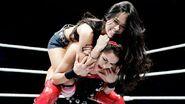 WWE World Tour 2013 - London.3