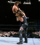 WrestleMania 17.25