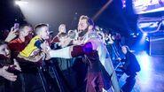 WrestleMania Revenge Tour 2016 - Belfast.5