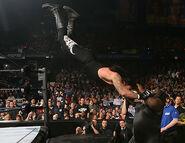 WrestleMania 22.30