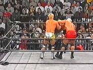 WCW Sin.00047
