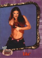 2002 WWE Absolute Divas (Fleer) Lita 19