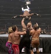 WrestleMania 21.56