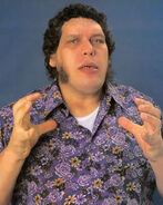 Andre the Giant5