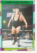 1995 WWF Wrestling Trading Cards (Merlin) King Kong Bundy 104