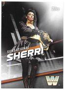 2016 WWE Divas Revolution Wrestling (Topps) Sensational Sherri 3