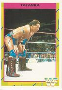 1995 WWF Wrestling Trading Cards (Merlin) Tatanka 48