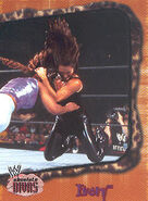 2002 WWE Absolute Divas (Fleer) Ivory 38