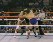 1.16.88 WWF Superstars.00003