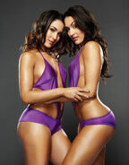 Bella-Twins-the-bella-twins-15131966-458-586-1-