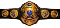 Nwa-junior-heavyweight-title