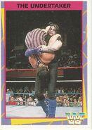 1995 WWF Wrestling Trading Cards (Merlin) Undertaker 115